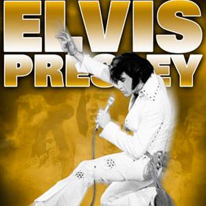 33 - Elvis Presley - Le Concert - Zénith, Paris (2010)