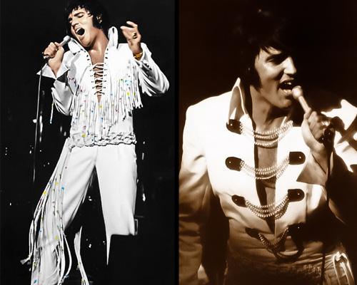 kekeLMB_Elvis_Presley_Le_Concert_Zenith_Paris_2010_(1)