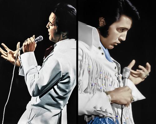 kekeLMB_Elvis_Presley_Le_Concert_Zenith_Paris_2010_(3)